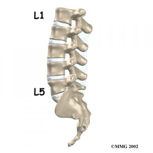 Lumbar Spine Chandler Physical Therapy